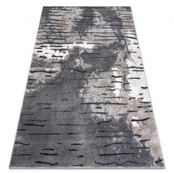 Modern Teppich COZY 8876 Rio - Strukturell zwei Ebenen aus Vlies grau