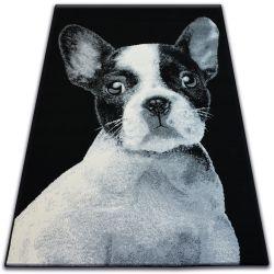 Bcf flash szőnyeg 33327/190 - Francia Bulldog