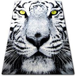 Carpet BCF FLASH 33292/170